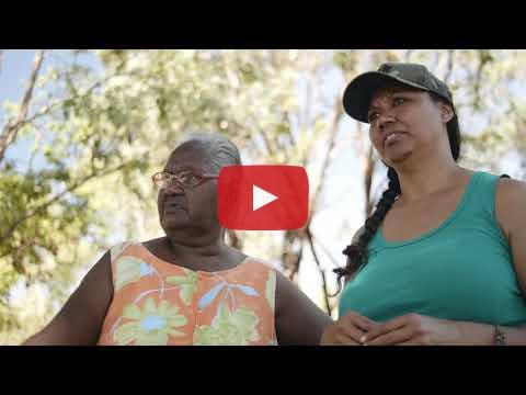 Kowanyama Bush Food Story