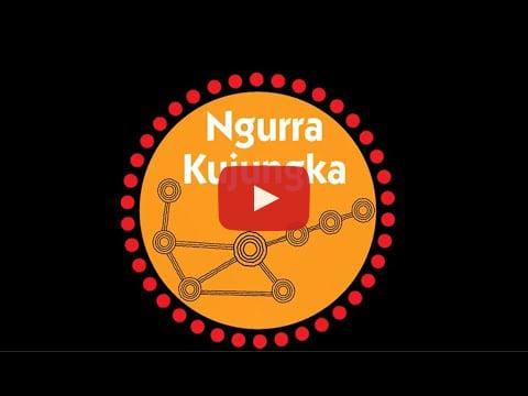 Ngurra Kujungka Koala Project