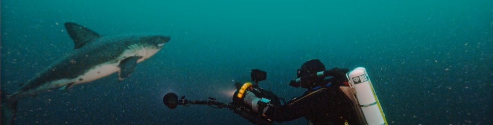 RED Underwater