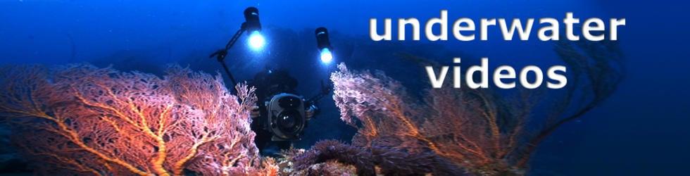 The Underwater Video Vimeo Group