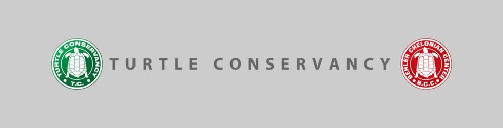 Turtle Conservancy Shorts