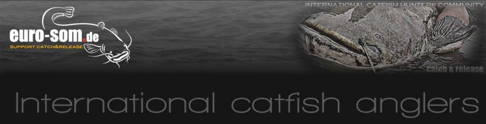 catfishing international