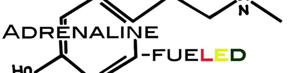 Adrenaline-FueledDOTcom