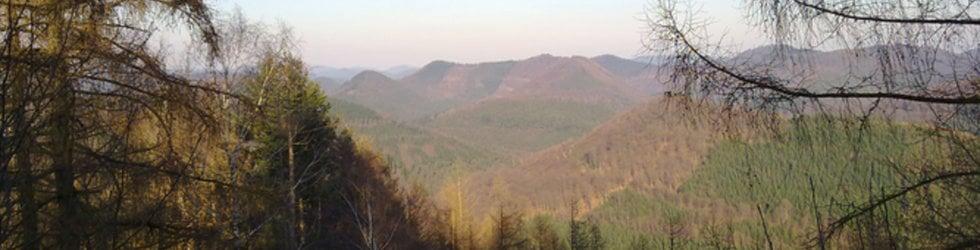 VTT & MTB-France-Vosges du Nord-Palatinat.