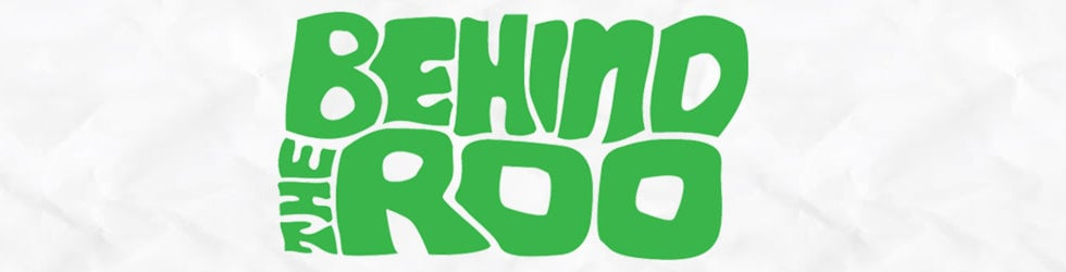 Collecting footage for Behind The Roo a Bonnaroo Documenatary