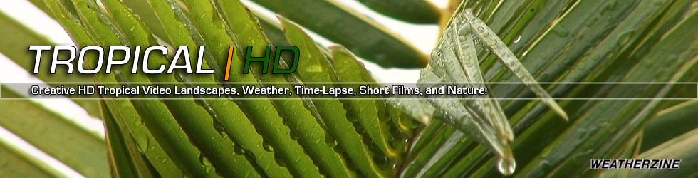 Tropical | HD