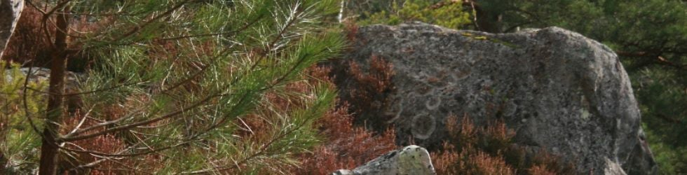 Happyclimb - Bouldering & Climbing