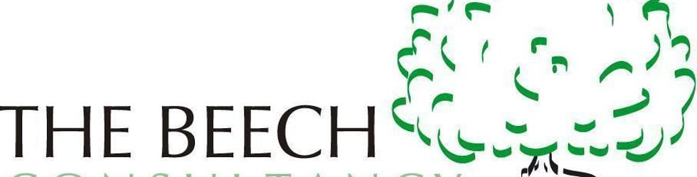 Performance and Organisational Development - The Beech Consultancy