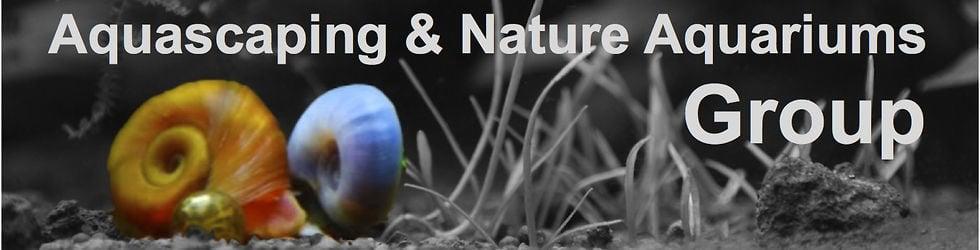 Aquascaping & Nature Aquariums