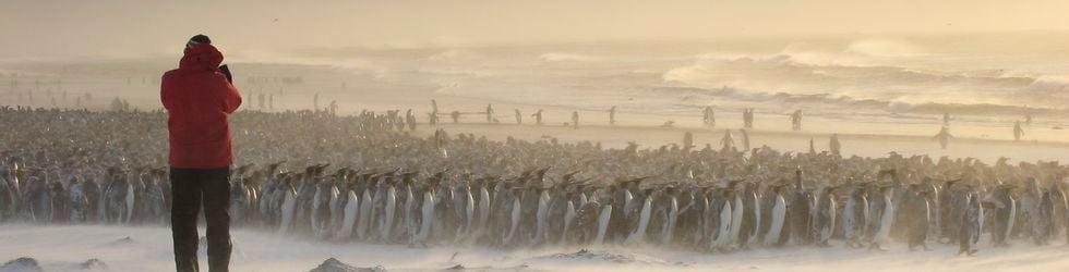 TAAF Terres Australes et Antarctiques Françaises