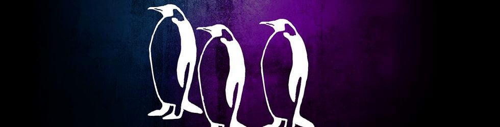 Music Video Penguin