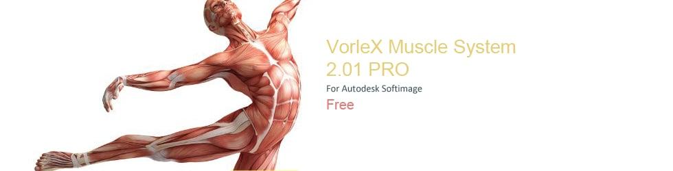 VorleX
