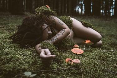 Entheogen, hallucinogen, psychedelic