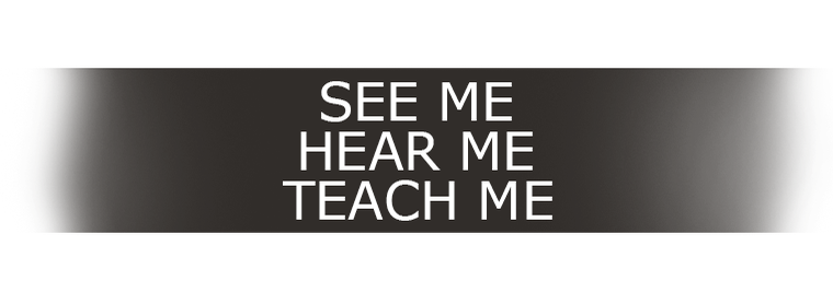 See Me, Hear Me, Teach Me