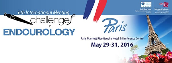 6th International Meeting: Challenges in Endourology