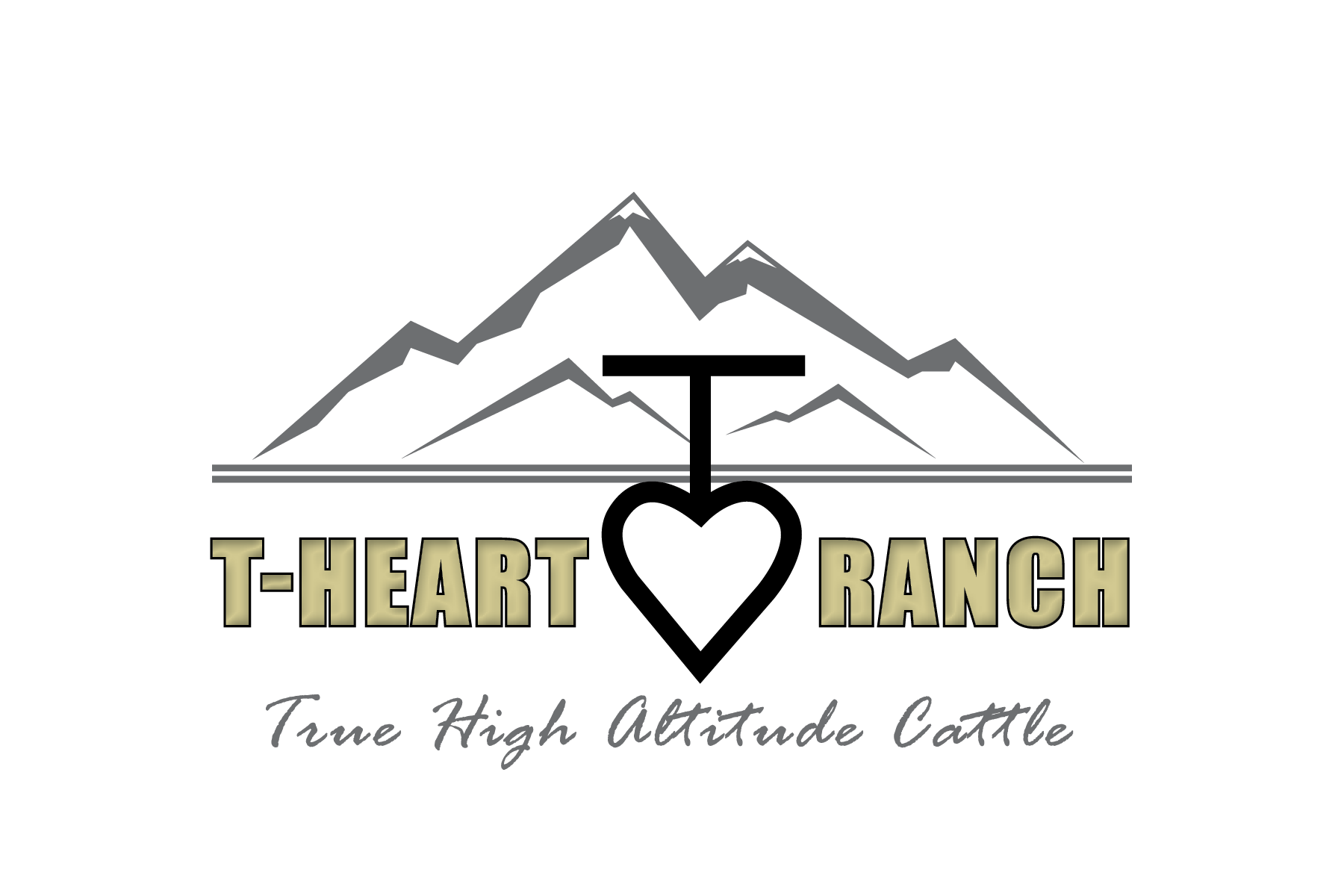 2018 T-Heart High Altitude Bull Sale