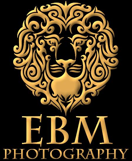 EBM Studios Cinematic Films