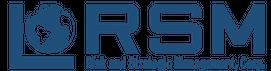 RSM_Program Management Risk Leadership Marketing_English