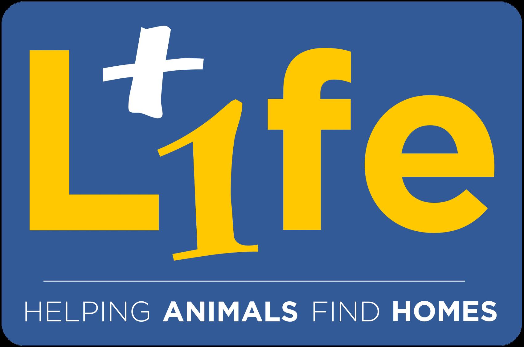 VolunCheers! for Iowa County Humane Society
