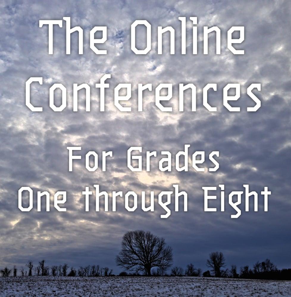Online Conferences Video Samples