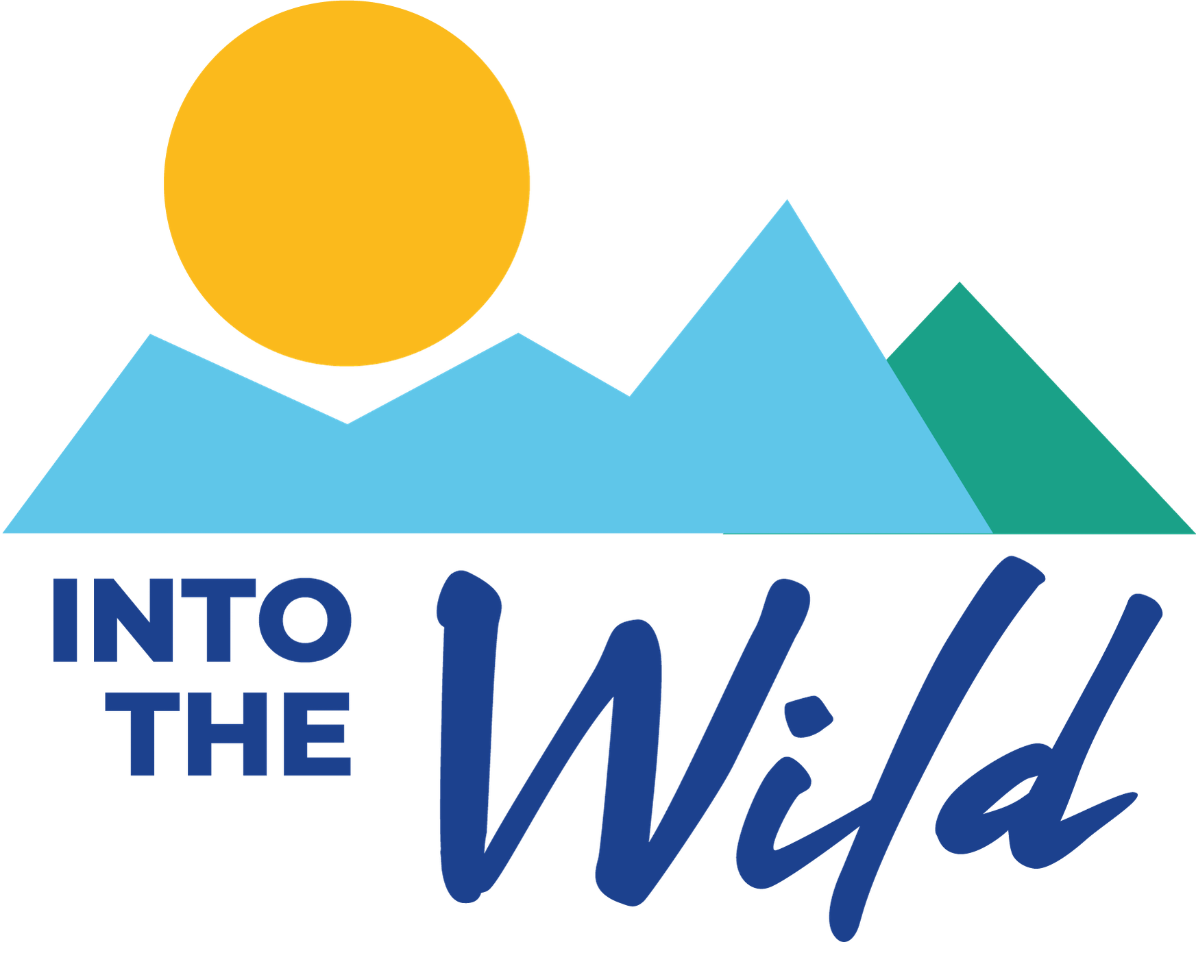 INTO THE WILD - A YEAR LONG JOURNEY OF ENCOUNTER WITH GOD
