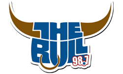 98-7 THE BULL
