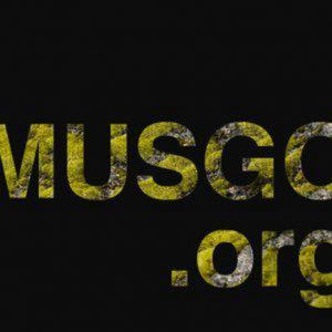 Profile picture for Fundación Musgo