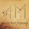 Shoot / Cut / Colour
