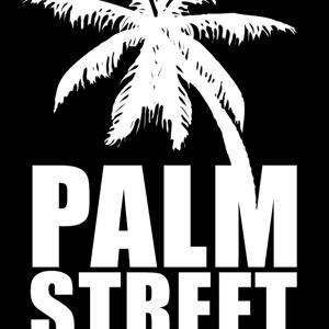 Profile picture for Palmstreetstudios