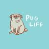 PugLife10