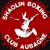 shaolinboxingclubaubagne.com