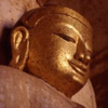 Insight Meditation Center