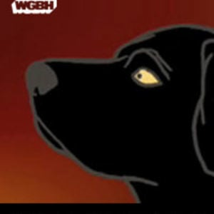 Profile picture for WGBH Lab