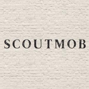 Profile picture for Scoutmob