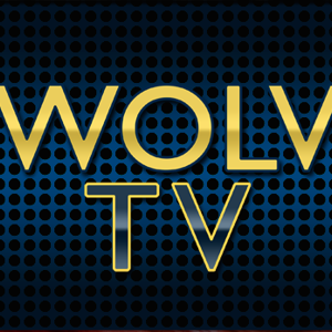 Profile picture for WOLV TV
