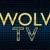 WOLV TV