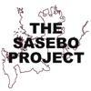 THE SASEBO PROJECT