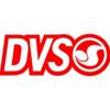 DVS skater