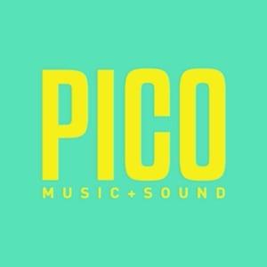 Profile picture for Pico Sound