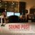 Sound Post