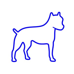 Profile picture for 3-Legged Dog
