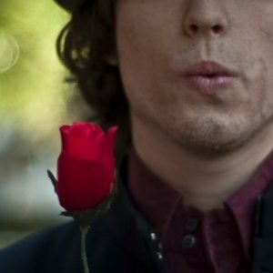 Profile picture for Damon Stea