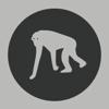 monkeygarden
