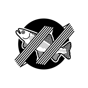 Profile picture for Rainbow Trout Music Festival