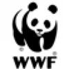 Monica Muti GVN Local WWF Italy