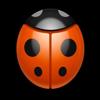 Ladybug TV