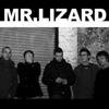 mrlizard