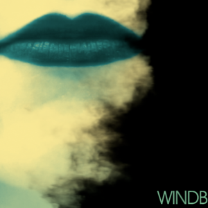 Profile picture for WINDBIRD