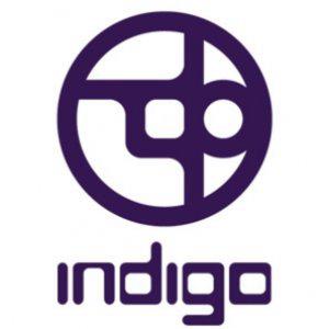Profile picture for Indigo