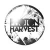 Photon Harvest